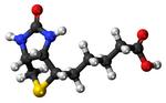 Biotin Molecule