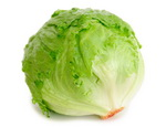 Lettuce as a Chlorine Food Source