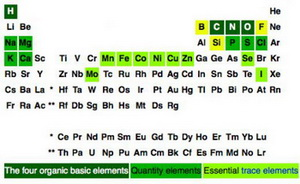 Dietary Minerals Part of the Periodic Table