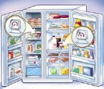 Refrigerator Storage Options
