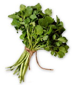 Watercress as a Chlorine Food Source