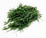 Tarragon Herb